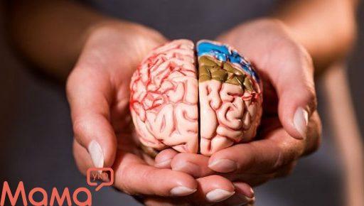 Робота мозку і настрій: як вплинути на своє самопочуття