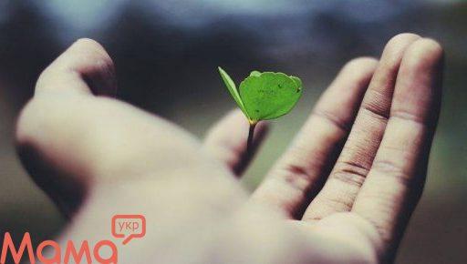 Коли дерева були маленькими: формування цінностей дитини