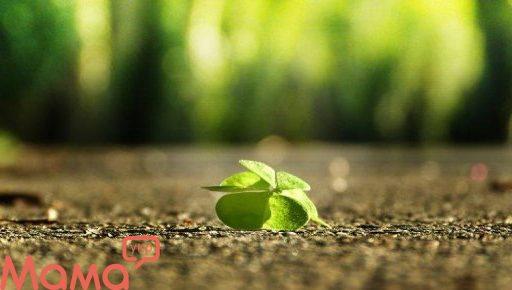 Як привернути удачу: усвідомлені гри з енергією везіння
