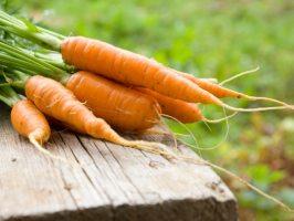 Ах, ці рідкісні страви з моркви!